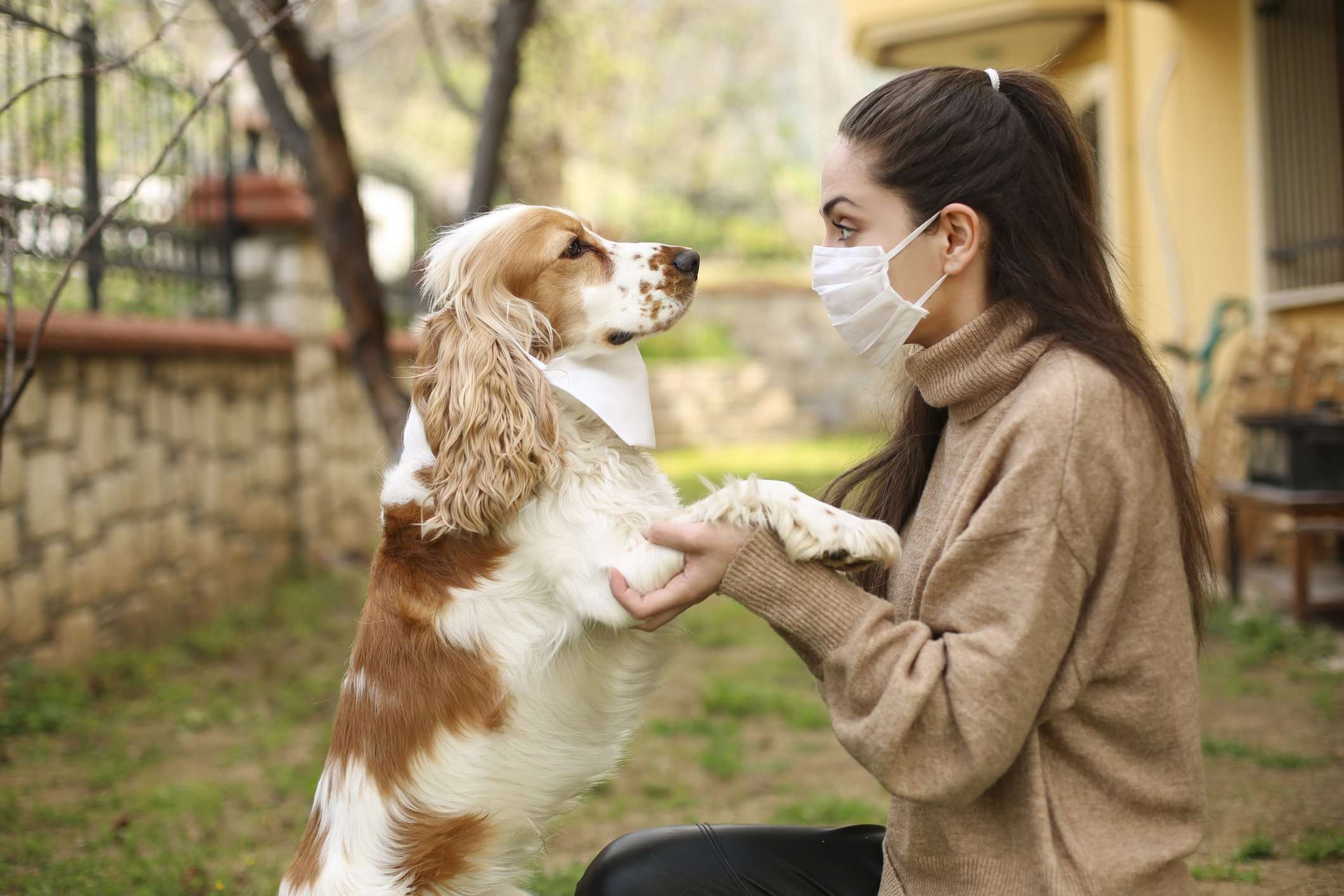 Can Humans Get Kennel Cough? Causes, Symptoms & Treatment