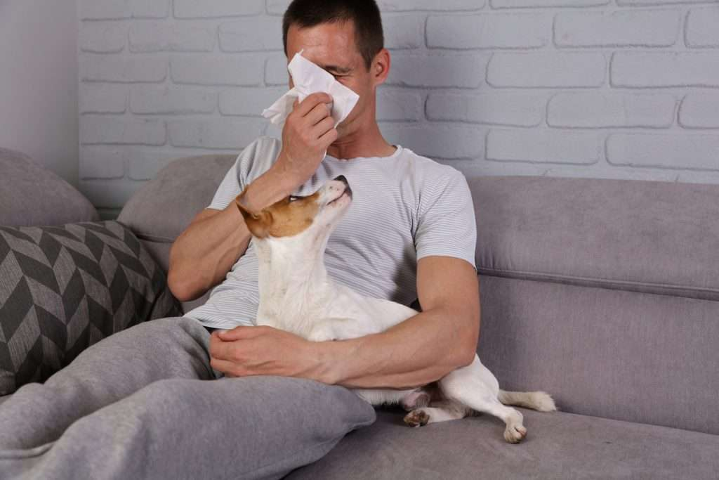 Symptoms of Kennel Cough in Humans